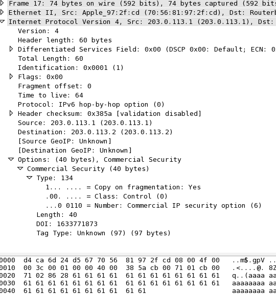 Wireshark showing the packet with the custom IP Option