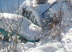 Schnee (Ausschnitt)